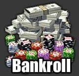 bankroll-definicion
