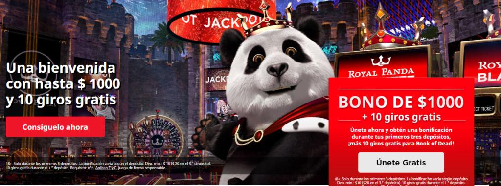 royal panda bono