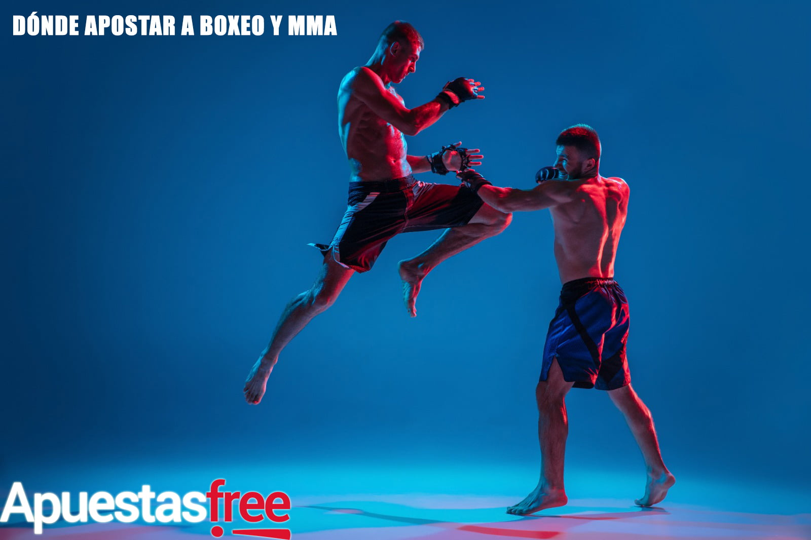 boxeo y mma